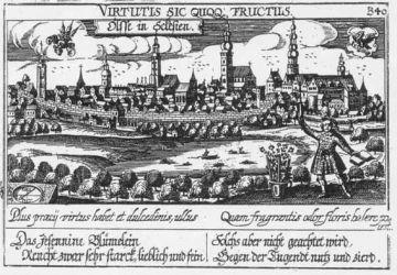 Ilustracja - herb miasta